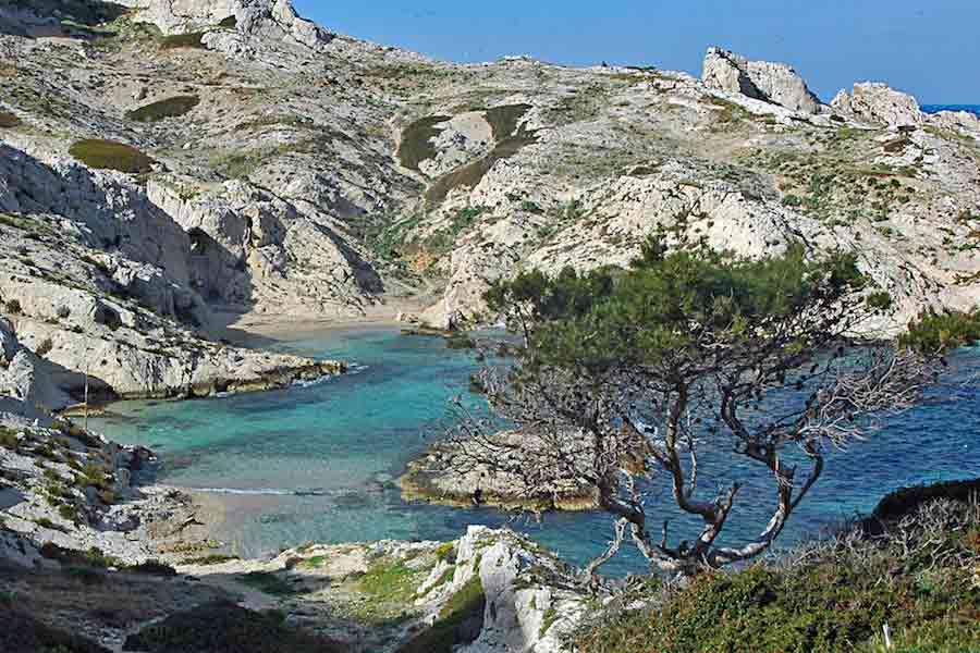 calanque-crine-frioul-plage