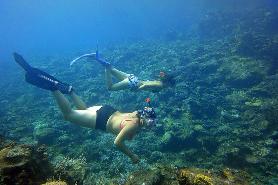 pmt-marseille-découverte-mer-plongée